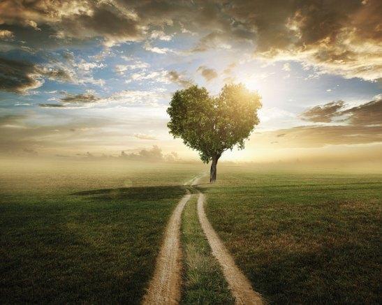 love-tree-web
